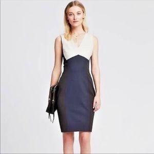 Gorgeous Banana Republic Sloan Dress